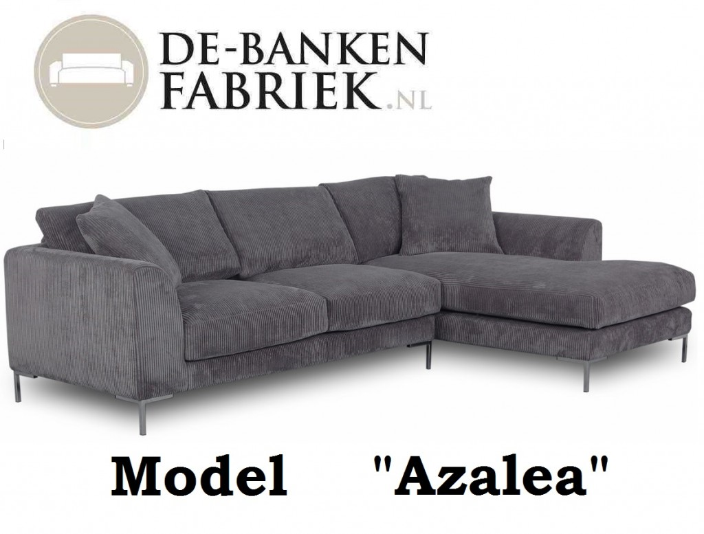 design bank Alkmaar